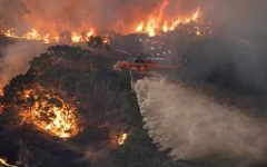Australia Wildfires devastate nation