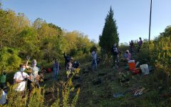 Hard at work! Volunteers planted native Ohio prairie flowers, grasses and sedges during a volunteer day on Oct. 7.